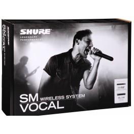 SHURE BLX24E / SM58